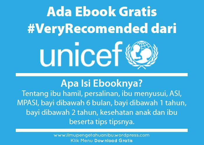 Ebook Panduan 12 Bulan Pertama